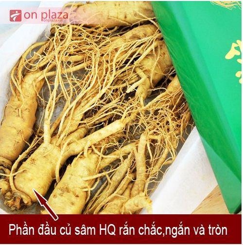 nhan-sam-han-quoc-loai-6-cukg 2