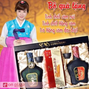 bo-qua-tinh-chat-sam-nui-500-300x300