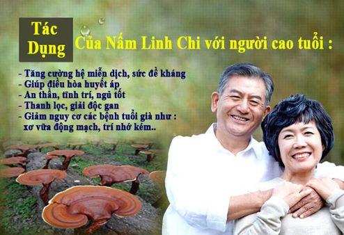 nam-linh-chi-do-dang-khay-han-quoc 3
