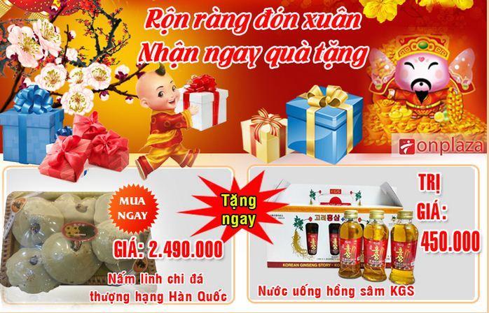 mua-nam-linh-chi-da-han-quoc-tang-nuoc-uong-hong-sam