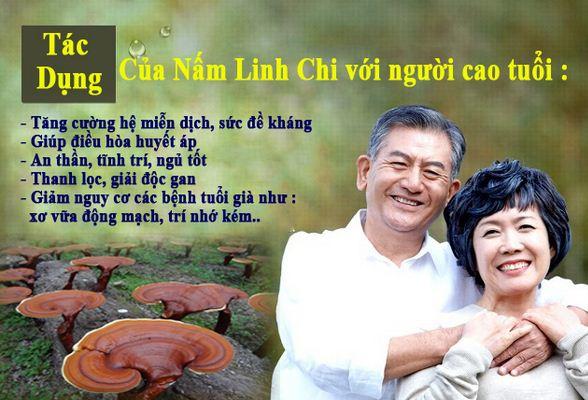 nam-linh-chi-vang-thai-lat-han-quoc 2