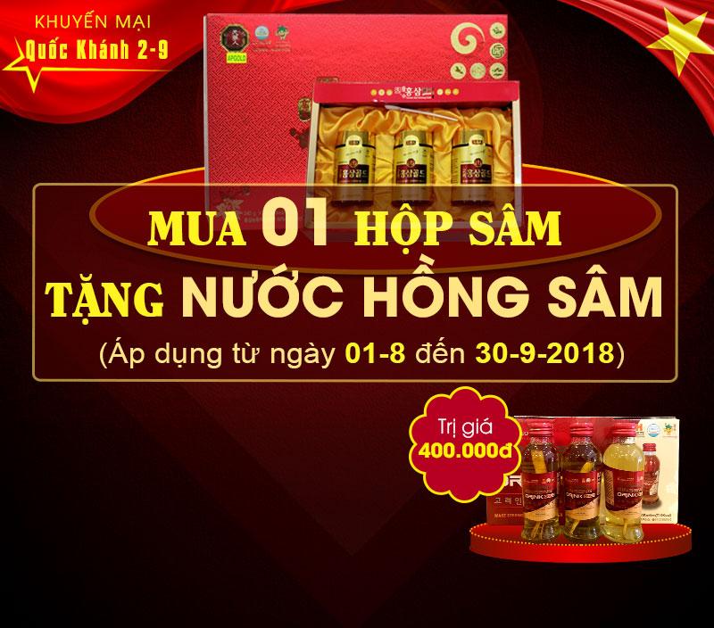 cao-hong-sam-3-240-500