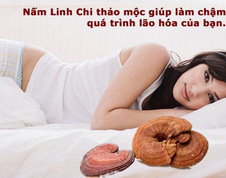 iw-linh chi lam cham lao hoa(1)(1)