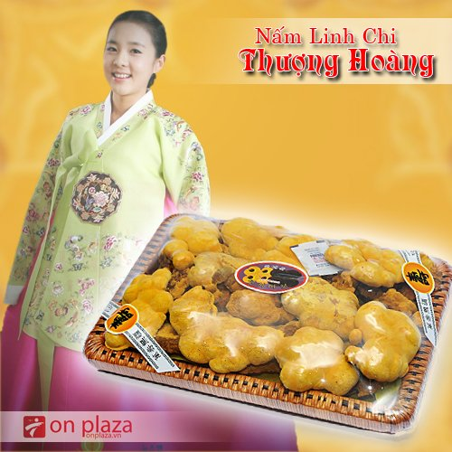 nam-chi-chi-thuong-hoang-500-new