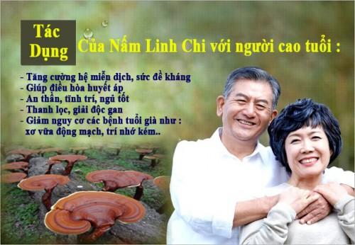 nam-linh-chi-cho-nguoi-cao-tuoi-500x346