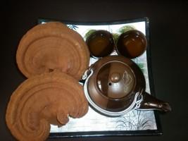 Nấm linh chi cao-huyet-ap