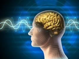 Tăng cường hệ thống thần kinh