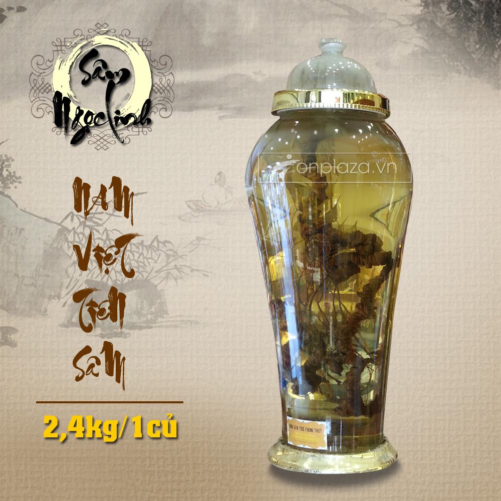 Bình sâm Ngọc Linh  tự nhiên loại 2,4 kg/củ NS301 4