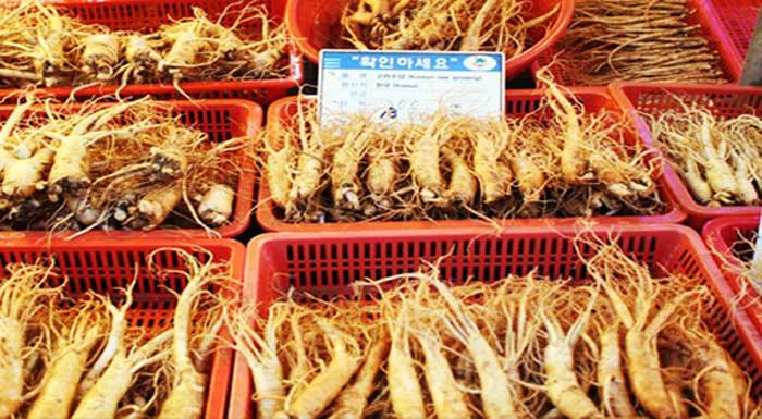 Khám phá khu chợ sâm nổi tiếng ở Hàn Quốc 2