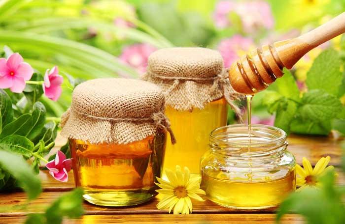 Cao sâm Ngọc Linh thường được chế biến cùng mật ong.