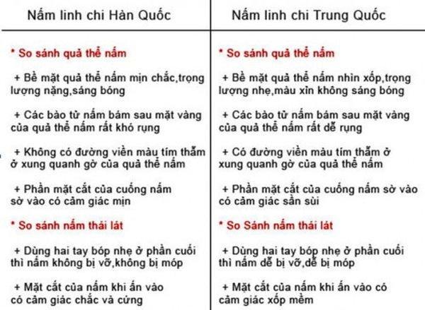 Nam-linh-chi-do-han-quoc-co-gia-bao-nhieu_4