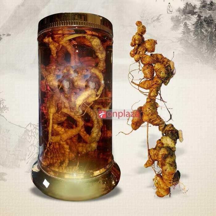 Bài thuốc chữa bệnh từ sâm Ngọc Linh núi tự nhiên 3