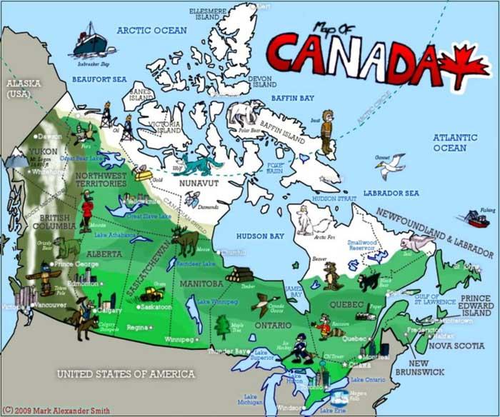 Bất ngờ với ngành sản xuất nhân sâm tram triệu USD tại Canada