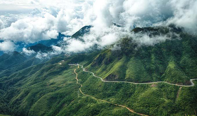 Sâm Ngọc Linh cứu nghèo cho huyện miền núi Trà Bồng 2