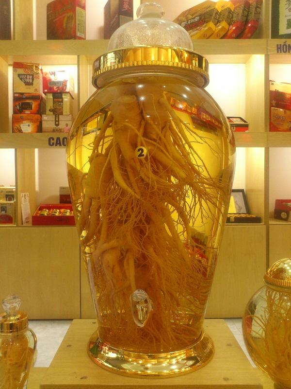 Nên chọn loại bình thủy tinh nào để ngâm nhân sâm Hàn Quốc 1