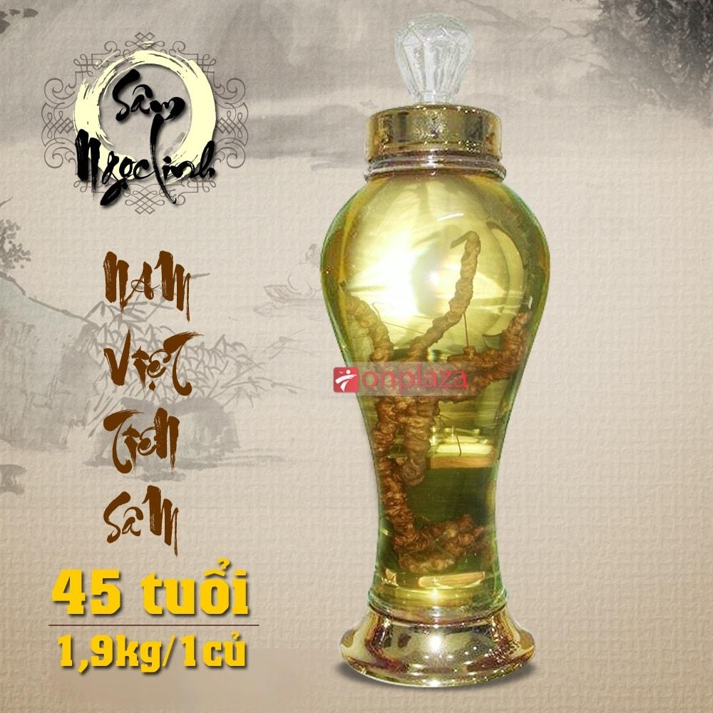 Phương pháp ngâm rượu Sâm Ngọc Linh giữ được dinh dưỡng cao 1