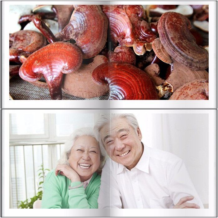 Tác dụng của nấm linh chi vàng Hàn Quốc với sức khỏe 1