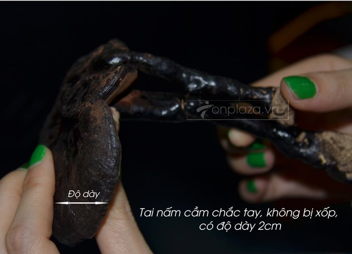 Nấm rừng hắc linh chi (loại nhỏ) L042 7