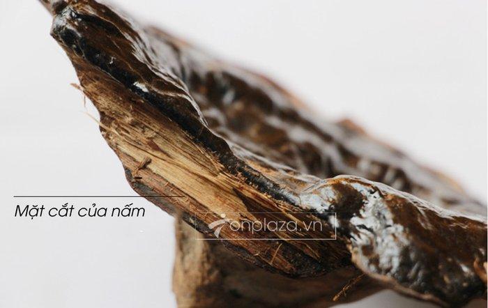 Nấm rừng hắc linh chi (loại nhỏ) L042 8