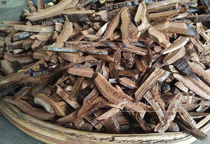 Nấm rừng hắc linh chi (loại nhỏ) L042 9