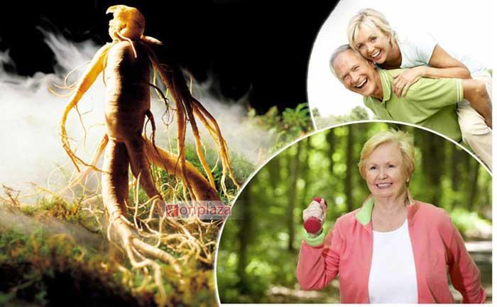 Người mắc bệnh tim có dùng được nhân sâm ngâm rượu không 1