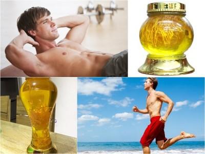đông trùng hạ thảo ngâm rượu có tác dụng rất tốt với cơ thể