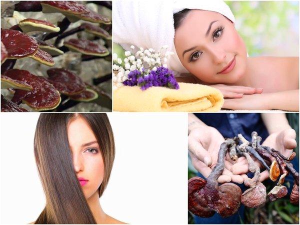 nấm lim xanh có tác dụng với da và tóc