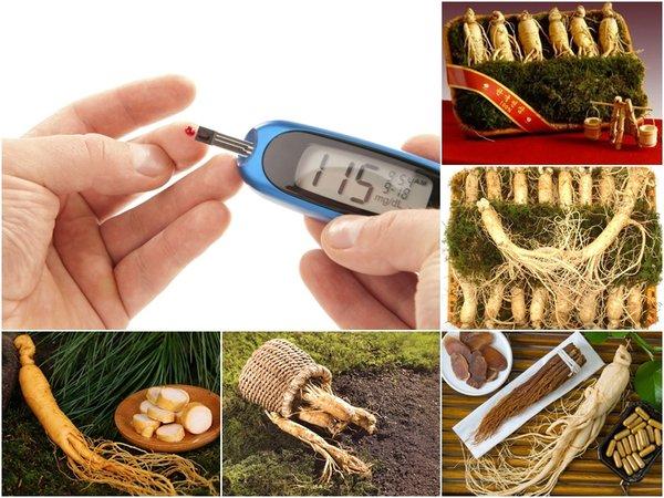 nhân sâm rất tích cực với bệnh tiểu đường