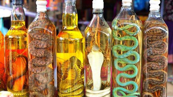 rắn hổ mang khô và tươi đều có thể ngâm rượu