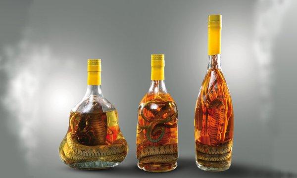 rượu rắn tốt cho cơ thể nếu sử dụng khoa học