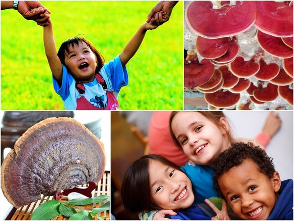 dùng nấm linh chi cho trẻ cần chú ý liều lượng