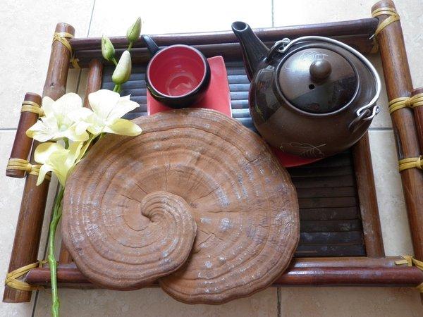 nấm linh chi có thể sử dụng hằng ngày thay nước lọc