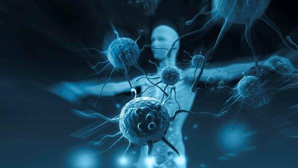 hệ miễn dịch đóng vai trò quan trọng trong việc hạn chế bệnh tật