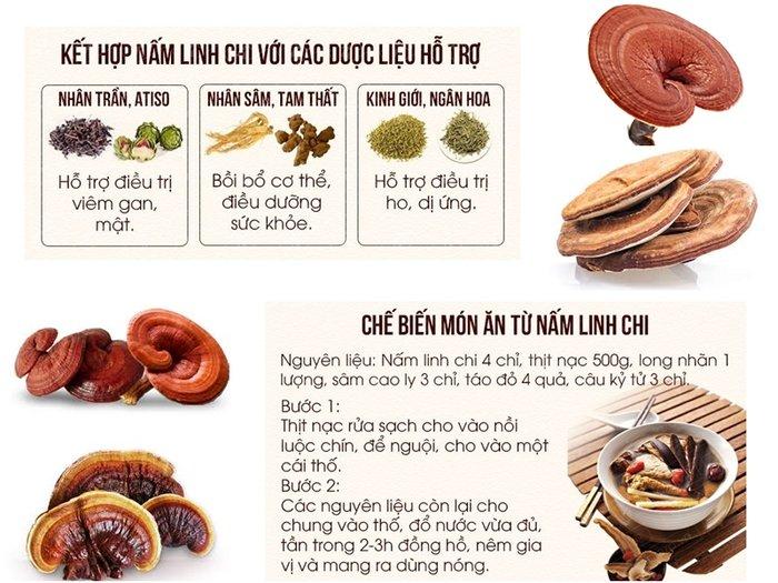kết hợp nấm linh chi với các dược liệu hỗ trợ và chế biến món ăn từ nấm linh chi