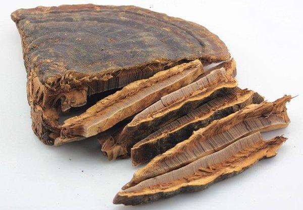"""Nhiều loại nấm linh chi Trung Quốc được """"biến""""thành nấm linh chi Hàn Quốc"""