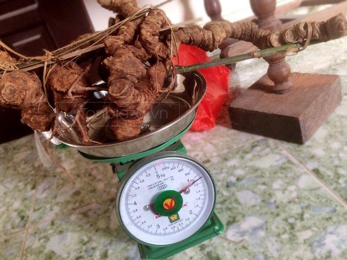 Bình ngâm sâm ngọc linh 1.1kg/củ loại 28L NS306 3