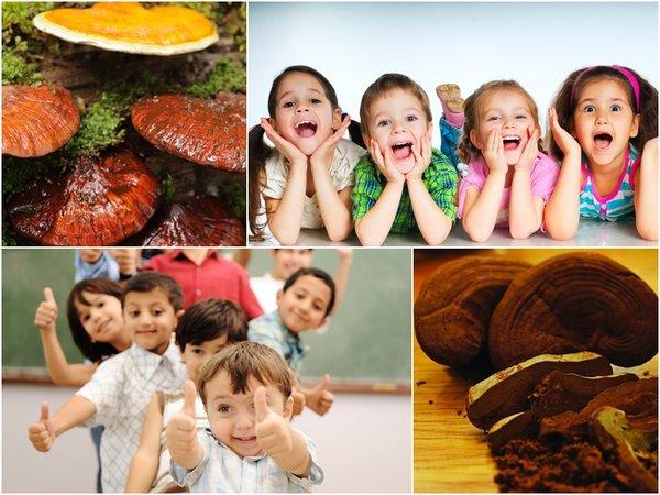 cách sử dụng nấm linh chi cho trẻ em hiệu quả cao