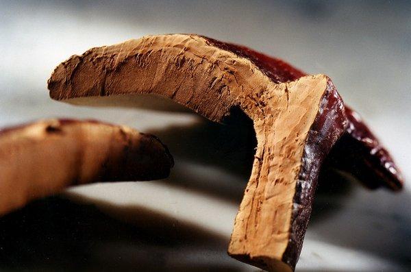 tại sao nên sử dụng nấm linh chi đỏ Hàn Quốc