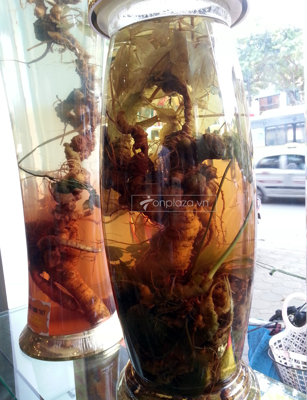 Bình sâm Ngọc Linh KG13 loại 5,7 lít NS300 2