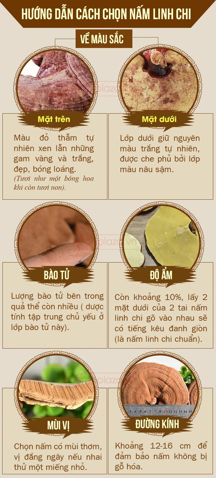 cách chọn nấm linh chi