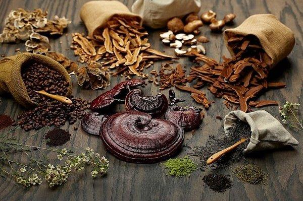 Không nên rửa nấm linh chi trước khi nấu