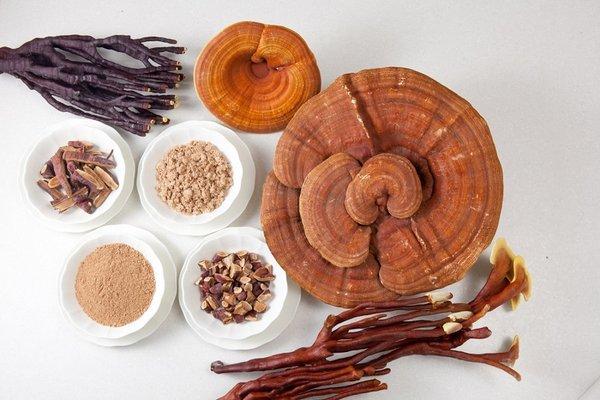 Nấm linh chi thái lát, dạng bột được ưa chuộng