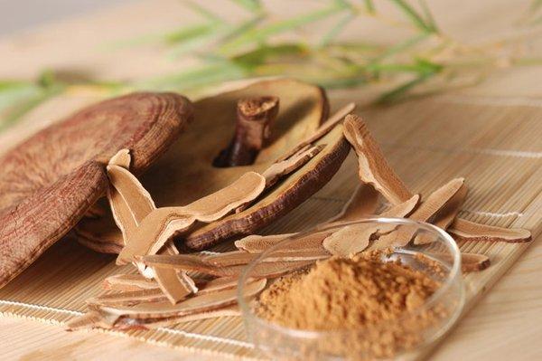 Sử dụng nấm linh chi nâng cao sức khỏe