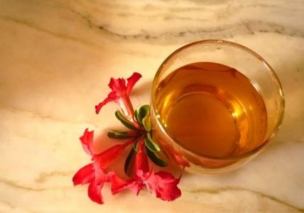 Uống nấm linh chi cải thiện vấn đề gan thận