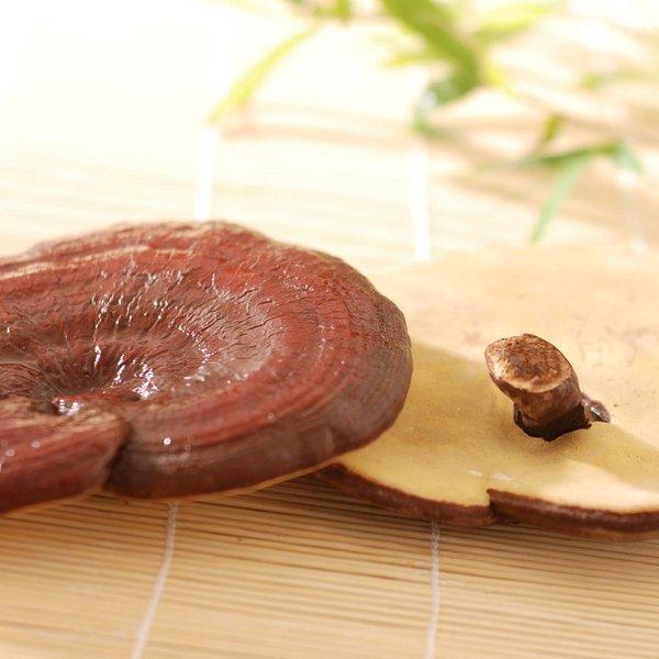 Sử dụng nấm linh chi đỏ để chăm sóc sức khỏe hiệu quả