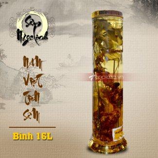 Bình sâm Ngọc Linh 20L NS308