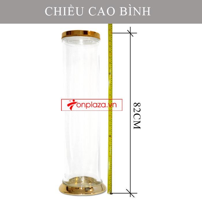 Bình sâm Ngọc Linh hình trụ 20L (loại 10 củ/kg) NS328 4