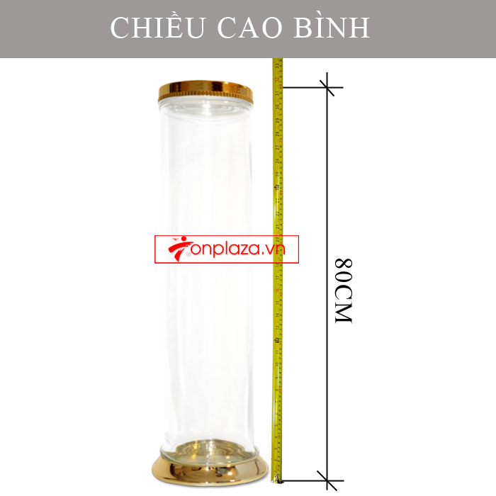 Bình sâm Ngọc Linh hình trụ dài củ to 20L (loại 10 củ/kg) NS327 4