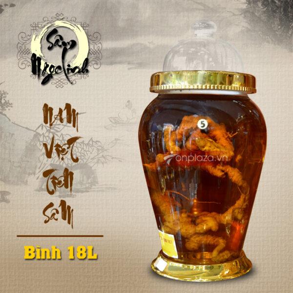 Bình sâm Ngọc Linh (số 5) 18L NS399