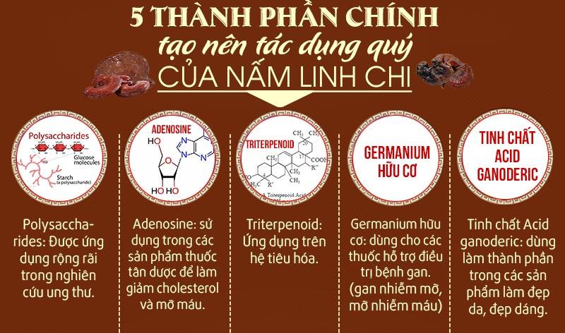 5 thành phần chính tạo nên tác dụng của nấm linh chi
